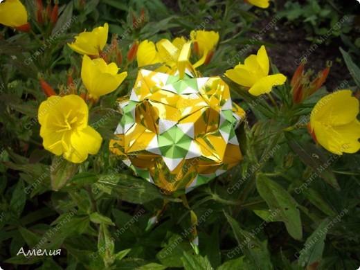 Новые Floral Globe часть 2 фото 11