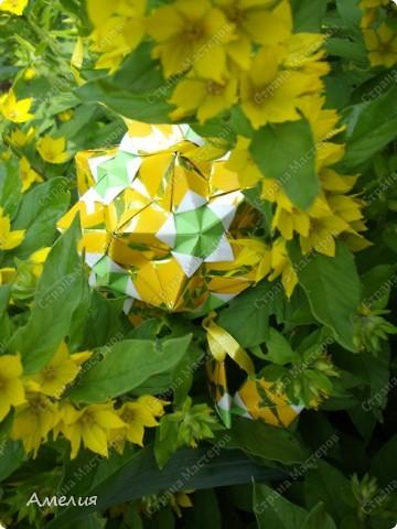 Новые Floral Globe часть 2 фото 13