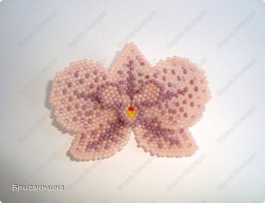 Орхидея +схема Бисер фото