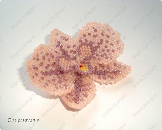 Орхидея полностью из бисера ТОХО.  Сзади крепления, можно носить как брошь или как украшение на руку.