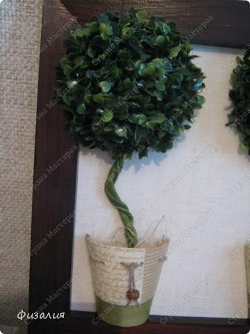 Для кроны дерева использовала искусственную травку. Клеила ее термопистолетом на половинку пенопленового (пенопласт-разъедается) шарика (сама вырезала). Ствол- проволока, обмотанная тейп-лентой. В качестве кашпо опять использовала торфяной горшок. фото 2