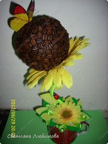 Моя сестра очень любит кофе и  подсолнухи .Решила сделать ей в подарок кофейно-подсолнуховый топиарий!  На создание такого чудо-цветка меня вдохновила работа Любы(зимняя вишенка). Спасибо вам за прекрасные работы! фото 1