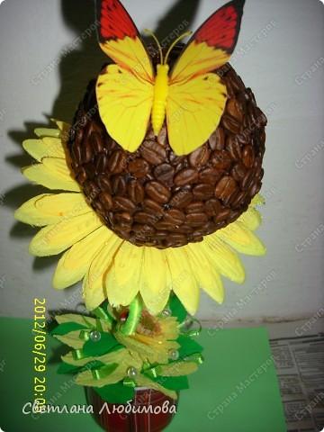 Моя сестра очень любит кофе и  подсолнухи .Решила сделать ей в подарок кофейно-подсолнуховый топиарий!  На создание такого чудо-цветка меня вдохновила работа Любы(зимняя вишенка). Спасибо вам за прекрасные работы! фото 3