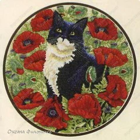 Котишка Тишка в цветах фото 5