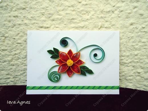 Весенние открытки. фото 4