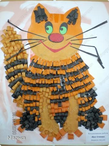 Котята фото 2