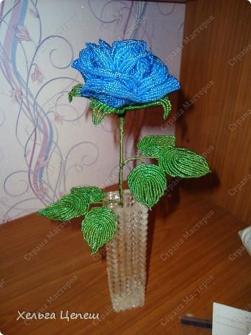 Розочки делала под заказ (все, кроме белой, она была в подарок). На каждую розу брала примерно по 5-7 дней.  фото 3