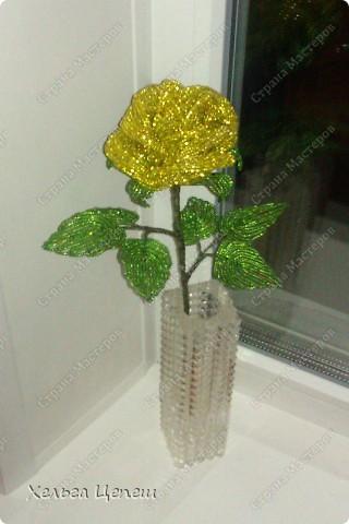 Розочки делала под заказ (все, кроме белой, она была в подарок). На каждую розу брала примерно по 5-7 дней.  фото 6