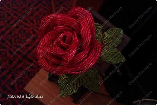 Розочки делала под заказ (все, кроме белой, она была в подарок). На каждую розу брала примерно по 5-7 дней.  фото 8