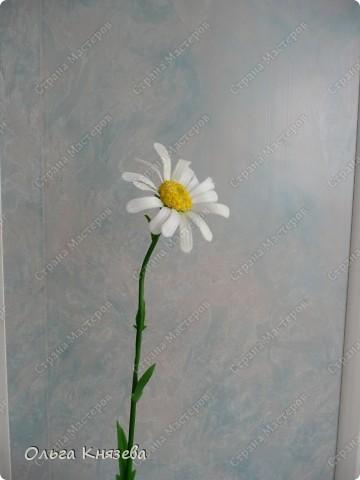 Долго собиралась, да быстро сделала)...Вот вроде бы простой цветок - ромашка, а работа над ней - кропотливая... Зато результат мне нравится) фото 3