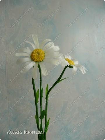 Долго собиралась, да быстро сделала)...Вот вроде бы простой цветок - ромашка, а работа над ней - кропотливая... Зато результат мне нравится) фото 2