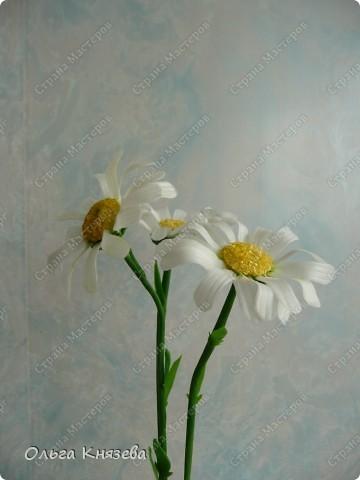 Долго собиралась, да быстро сделала)...Вот вроде бы простой цветок - ромашка, а работа над ней - кропотливая... Зато результат мне нравится) фото 1