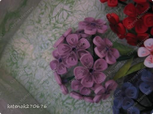 Вот и доделала я свои флоксы. Добавила внизу зелени и затонировала лепестки цветков. Результат мне самой - понравился, а Вам? фото 3
