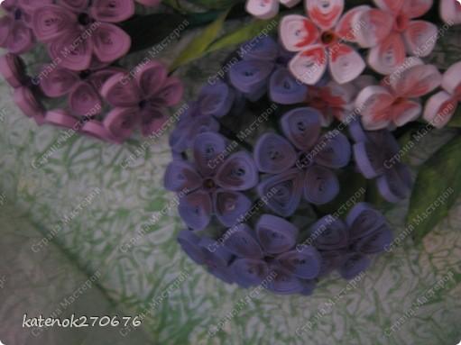 Вот и доделала я свои флоксы. Добавила внизу зелени и затонировала лепестки цветков. Результат мне самой - понравился, а Вам? фото 4