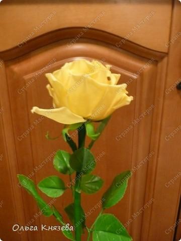 Насмотревшись роз-красавиц наших мастериц, захотела тоже сделать розу! Получилась вот такая красотка) фото 4