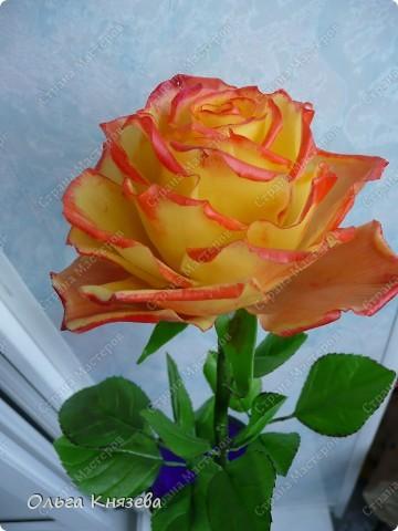 Насмотревшись роз-красавиц наших мастериц, захотела тоже сделать розу! Получилась вот такая красотка) фото 3