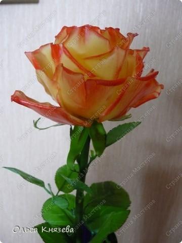Насмотревшись роз-красавиц наших мастериц, захотела тоже сделать розу! Получилась вот такая красотка) фото 1