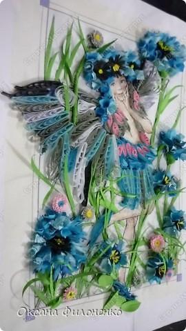 мой цветок-василёк фото 3