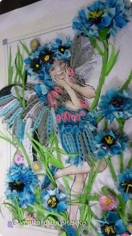 мой цветок-василёк фото 2