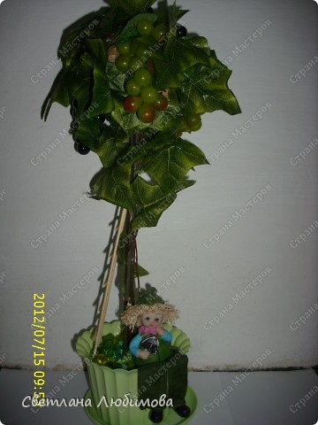 """Вот такое виноградное деревце я сделала сама себе на день рождения. Подруга спросила что мне подарить, я сказала, что хочу виноградные гроздья. Мое деревце чуть"""" обросшее """"листвой получилось. Жара стоит до 46 градусов, так что виноград спрятался за листиками. фото 1"""