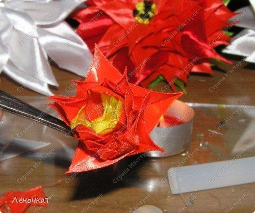 Так  вот  ты какой   цветочек  аленький!А  из  чего   же  ты   сделан? фото 11