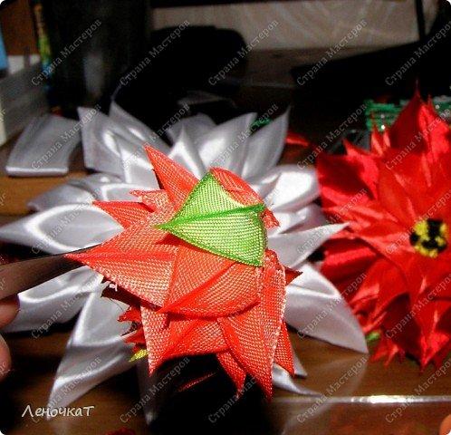 Так  вот  ты какой   цветочек  аленький!А  из  чего   же  ты   сделан? фото 12