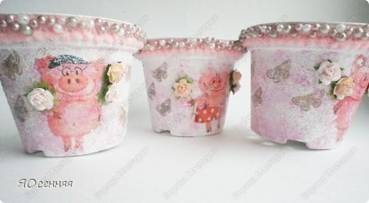 шпажки для цветочных горшков фото 3