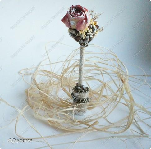 шпажки для цветочных горшков фото 4