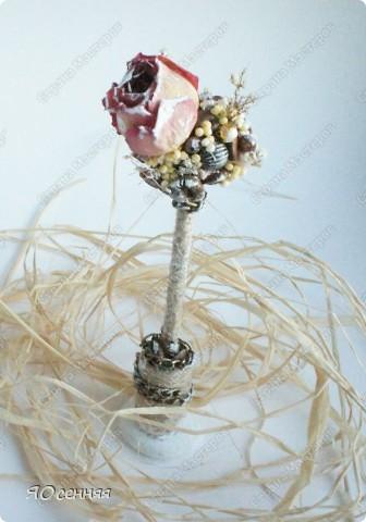 шпажки для цветочных горшков фото 5