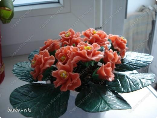 Это моя первая работа во флористики Уважаемые мастерицы жду ваших оценок  Приму любой коментарий фото 1