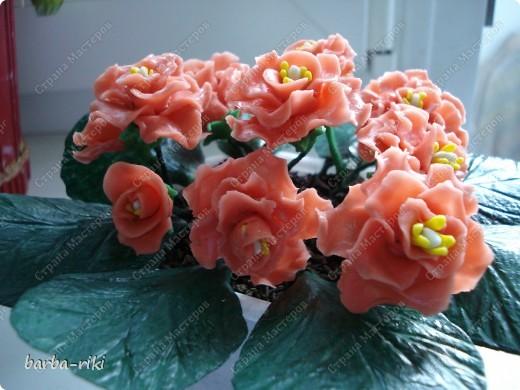 Это моя первая работа во флористики Уважаемые мастерицы жду ваших оценок  Приму любой коментарий фото 3