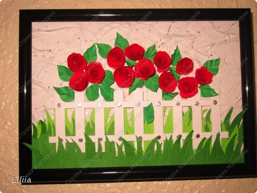 Картинки в подарок любительницам роз. фото 1