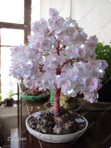Цветущий персик - один из основных символов бессмертия в Древнем Китае. фото 3