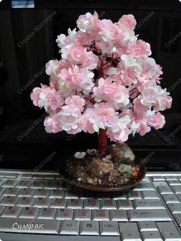 Цветущий персик - один из основных символов бессмертия в Древнем Китае. фото 1