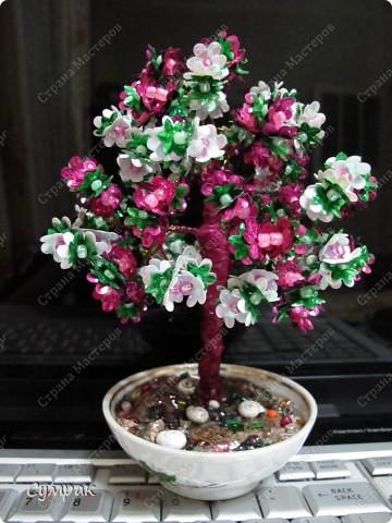 Цветущий персик - один из основных символов бессмертия в Древнем Китае. фото 4
