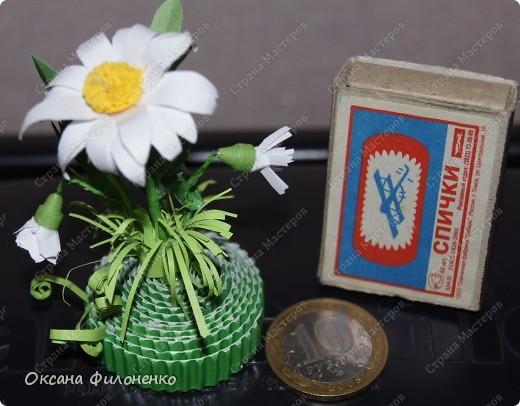 миниатюрки-полянки фото 4