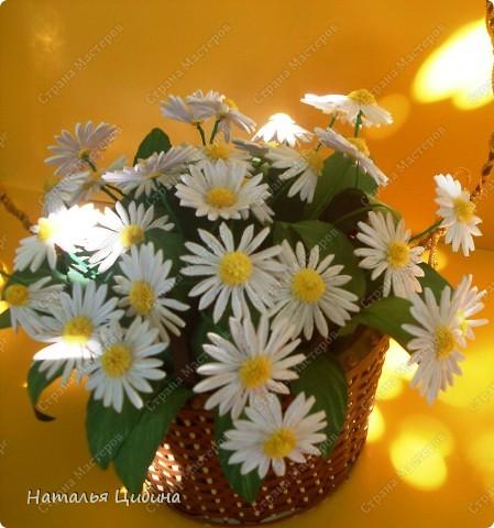 """Всем приветик! Заканчивается лето, а так хочется сохранить подольше эту летнюю красоту полей, садов и т,д. Вот я и наконец решила сделать """"популярные"""" в СМ ромашки, и испытать свои ножницы. Как получилась, с удовольствием узнаю от вас! фото 2"""