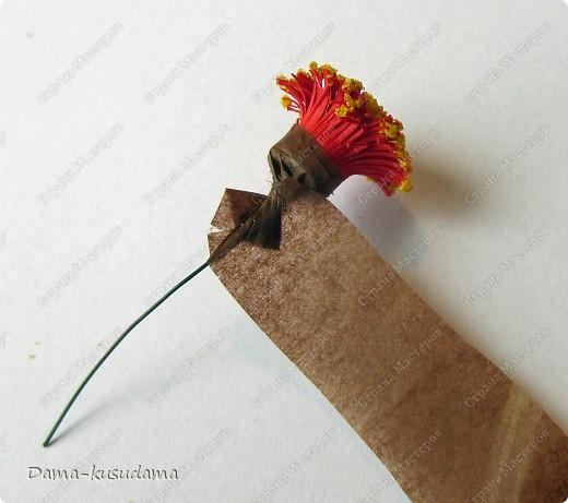 Очень мне понравилась эта птичка АнтониныШ http://stranamasterov.ru/node/350399 .Любовалась я ей несколько месяцев пока не решилась сделать и свою птичку. Размер работы 30 на 30 см.Размер работы в рамке 50 на 50 см.Все сделано из бумаги 125 граммовой, она больше подошла для перышек папугая, чем 80 граммовая. фото 22