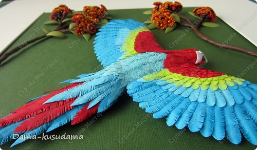 Очень мне понравилась эта птичка АнтониныШ http://stranamasterov.ru/node/350399 .Любовалась я ей несколько месяцев пока не решилась сделать и свою птичку. Размер работы 30 на 30 см.Размер работы в рамке 50 на 50 см.Все сделано из бумаги 125 граммовой, она больше подошла для перышек папугая, чем 80 граммовая. фото 3