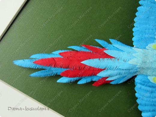 Очень мне понравилась эта птичка АнтониныШ http://stranamasterov.ru/node/350399 .Любовалась я ей несколько месяцев пока не решилась сделать и свою птичку. Размер работы 30 на 30 см.Размер работы в рамке 50 на 50 см.Все сделано из бумаги 125 граммовой, она больше подошла для перышек папугая, чем 80 граммовая. фото 4