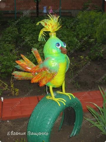 Пошаговая инструкция как сделать попугая из пластиковых бутылок