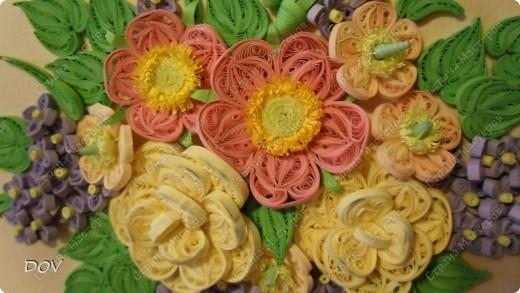 шиповник и розы фото 1