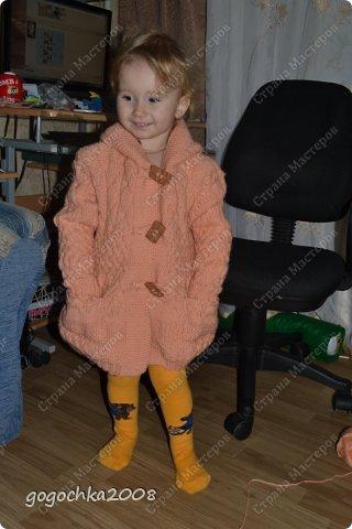 пальтишко для лапочки-дочки фото 2