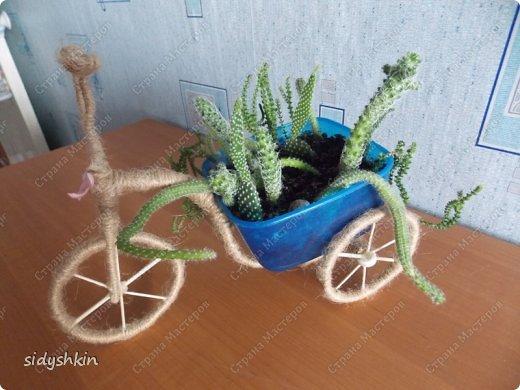 Увидела на сайте велосипедик и решила для своих кактусов такое кашпо фото 1