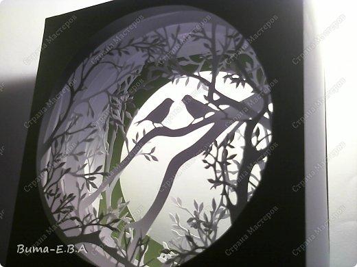 Поделка изделие День рождения Бумажный туннель Вырезание Птичий концерт  Бумага Клей фото 7