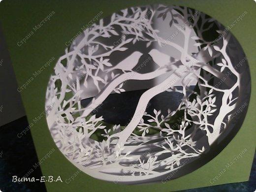 Поделка изделие День рождения Бумажный туннель Вырезание Птичий концерт  Бумага Клей фото 11