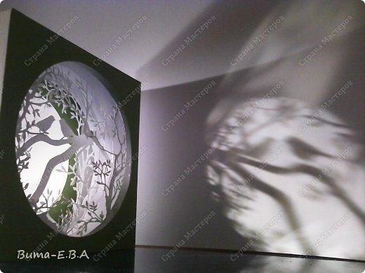 Поделка изделие День рождения Бумажный туннель Вырезание Птичий концерт  Бумага Клей фото 20
