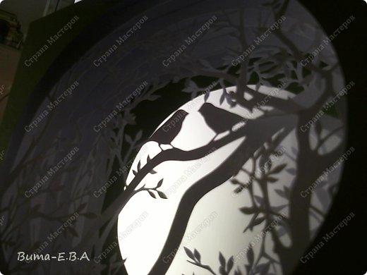 Поделка изделие День рождения Бумажный туннель Вырезание Птичий концерт  Бумага Клей фото 22