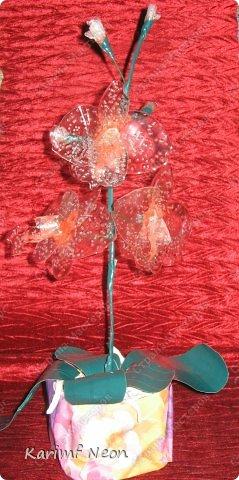 Раньше делал цветы из клея ПВА http://stranamasterov.ru/node/151707 Теперь пришла очередь клея ТИТАН фото 18