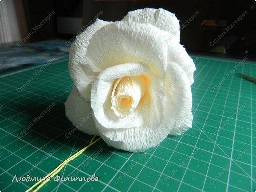 Добрый день дорогие мастерицы! Хочу поделиться с Вами своим способом изготовления роз из гофрированной бумаги. Америку я не открыла, в Стране много подобных МК, но у каждого, в том числе и у меня,  своя технология. Может кому-нибудь пригодится мой МК. фото 31